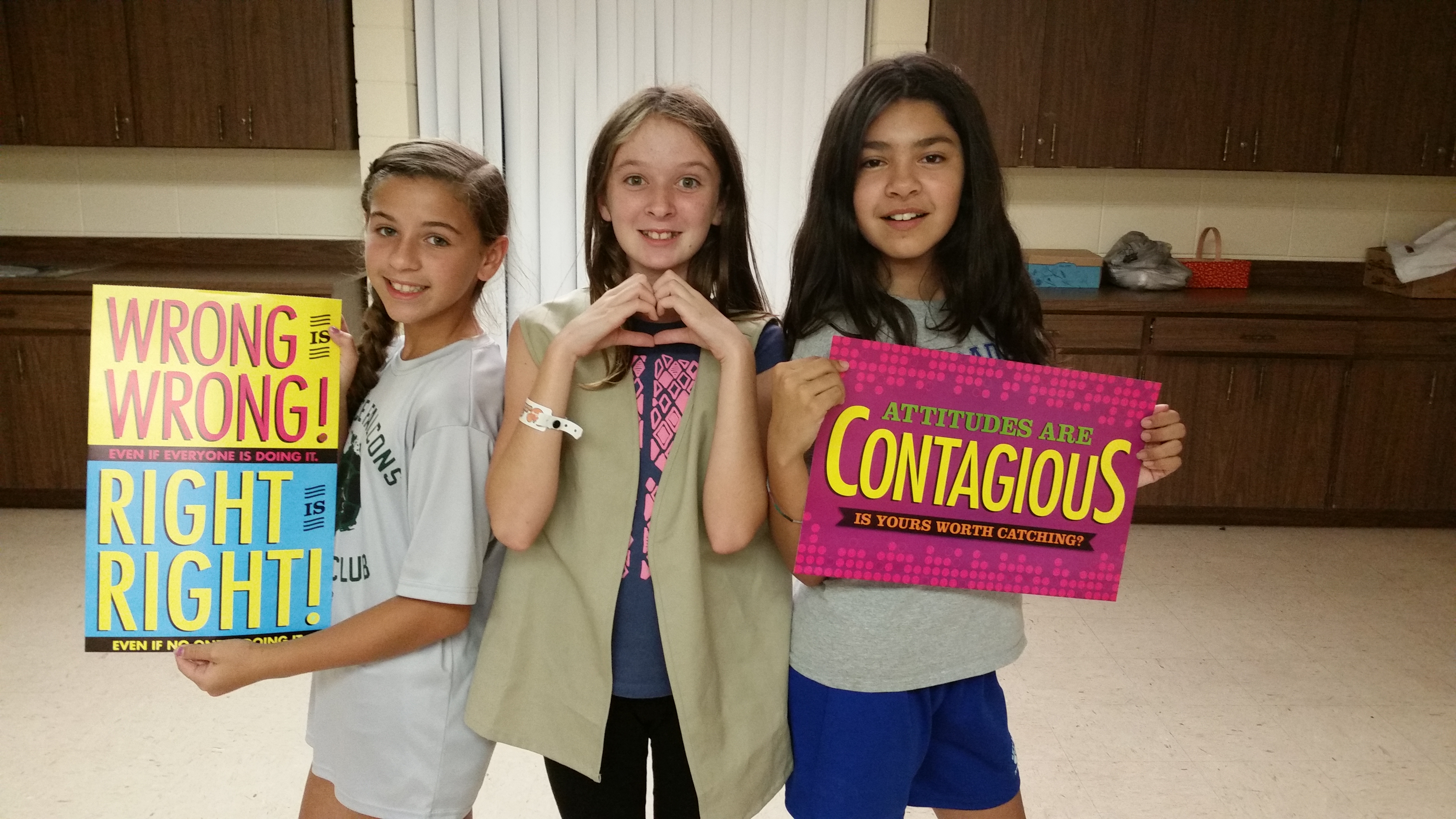girl scouts bullying girl scouts of gulfcoast florida inc