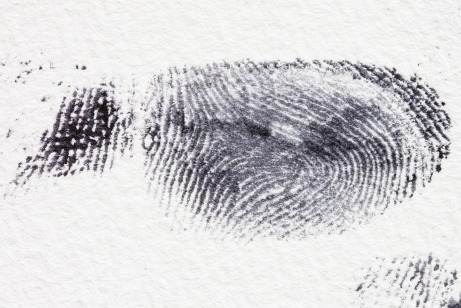 fingerprint-255897 public domain.jpg